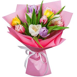 Тюльпаны (11 шт.)